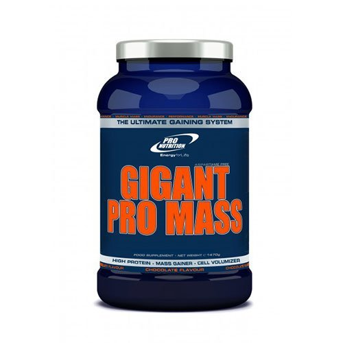 gigant-pro-mass