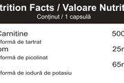 carnitine-plus-tabel