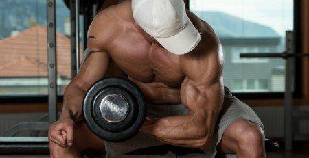 definire masa musculara
