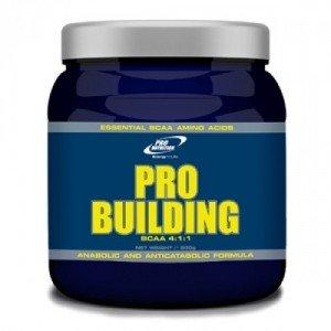 pro building