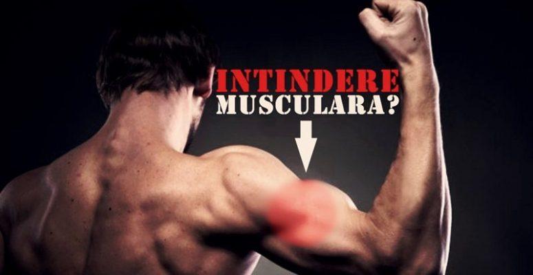 proteine pentru masa musculara Body Line